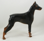 Click to view Doberman Pincher  Door Stop photos